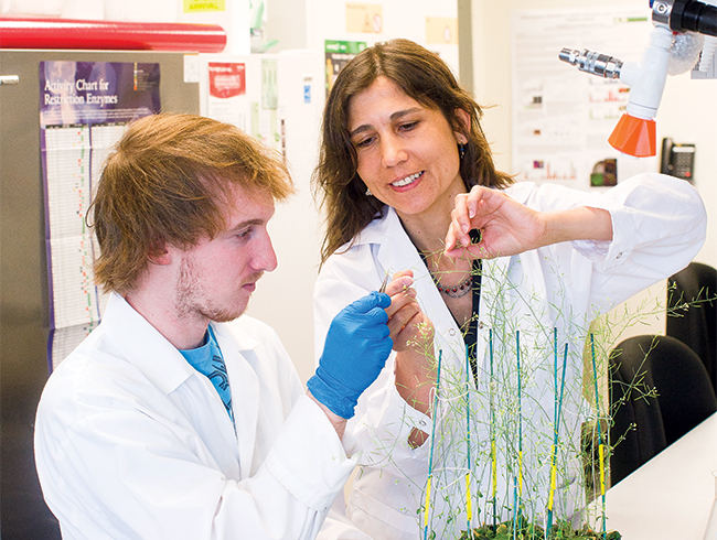 students and faculty studying plant
