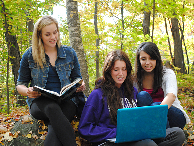 students studying in forest
