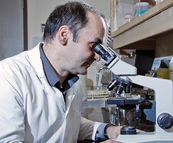 faculty looking into microscope