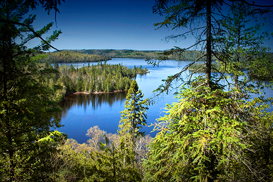 outdoor image of lake and trees