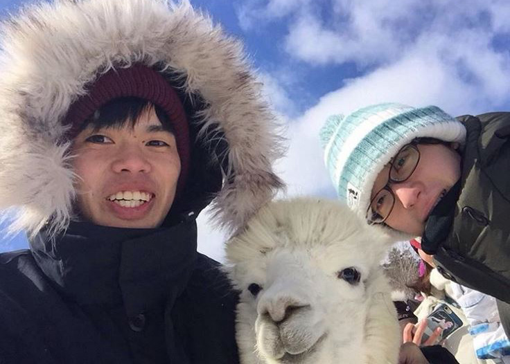 students posing with an alpaca