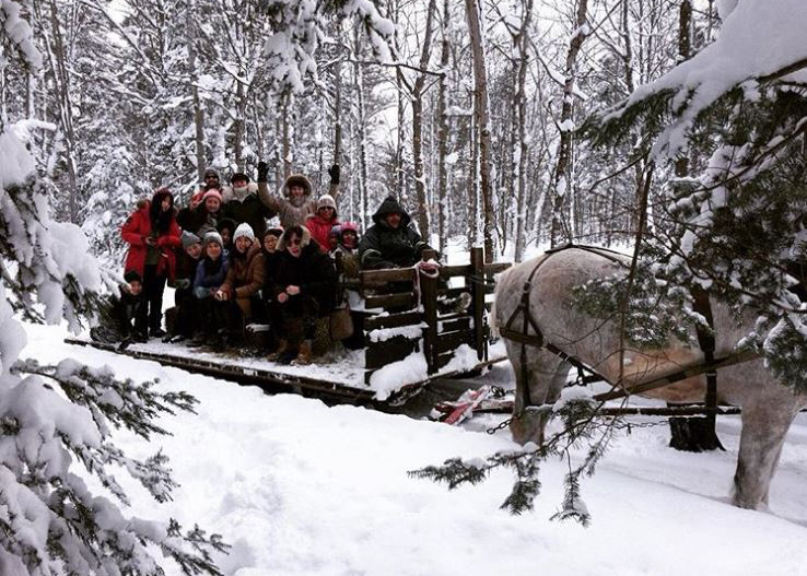 student on a horse sleigh ride