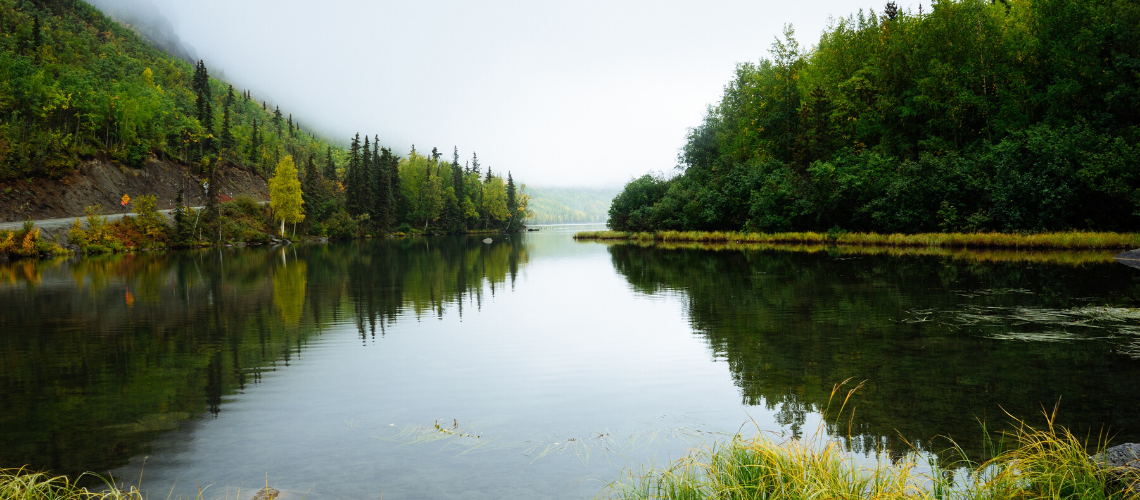 image of a lake with trees on both sides